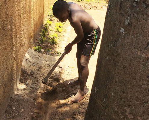 One of the street boys gardening