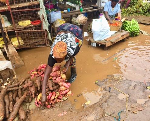Keeping vegetables dry at Ggaba
