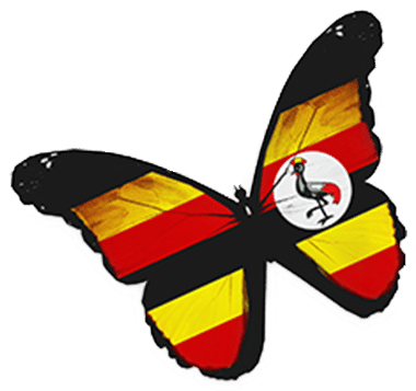 Butterfly with Ugandan flag colours