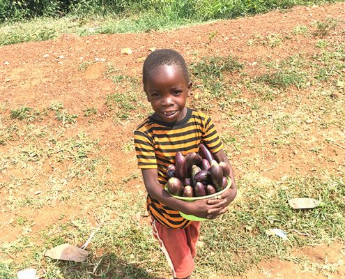 Boy selling the aubergines