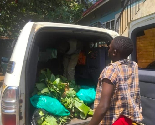 Fruit and vegetables arrive at our charity